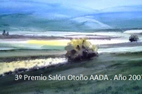 2-3-premio-salon-otono-aada-ano-2007-webA9DDCC9C-316E-EAF0-3A55-FFBE5CE298FF.jpg